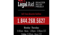 resized disaster hotline magnet